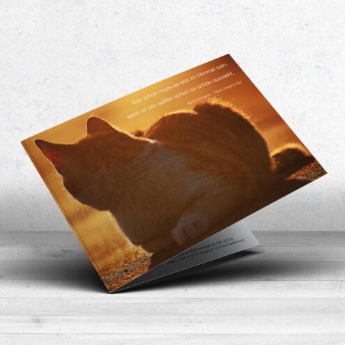 Trauerkarte Katze für Tierärzte - Motiv 07 im Ruhmservice Shop