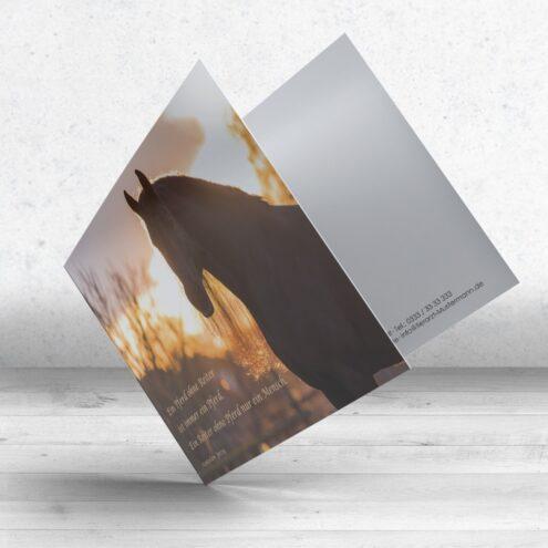 Trauerkarte Pferd - Motiv 12 im Ruhmservice Shop
