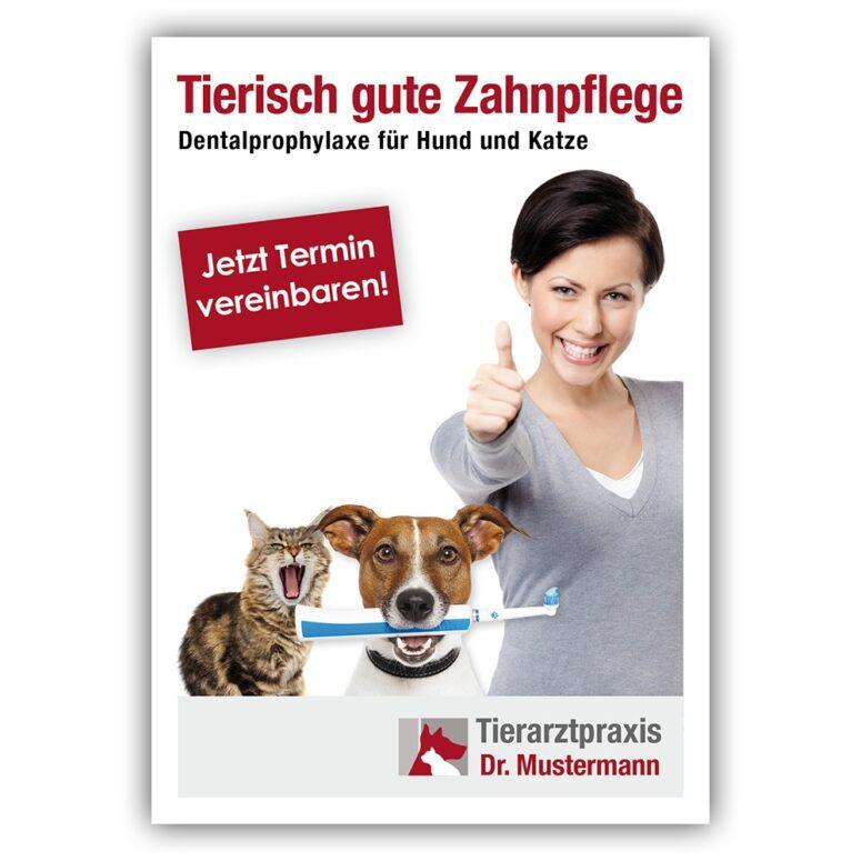 Postkarte Zähne Tierarzt