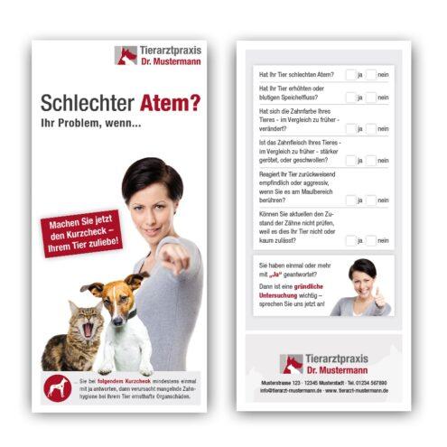 Flyer Zähne Tiermedizin