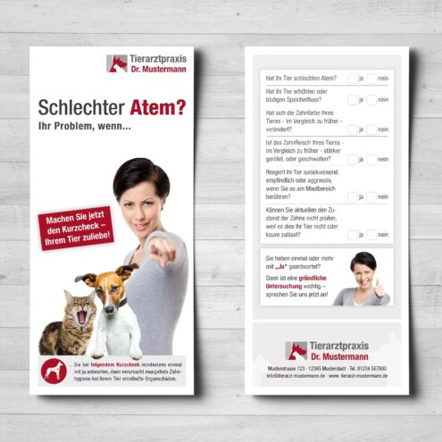 Dental Flyer Tierarzt