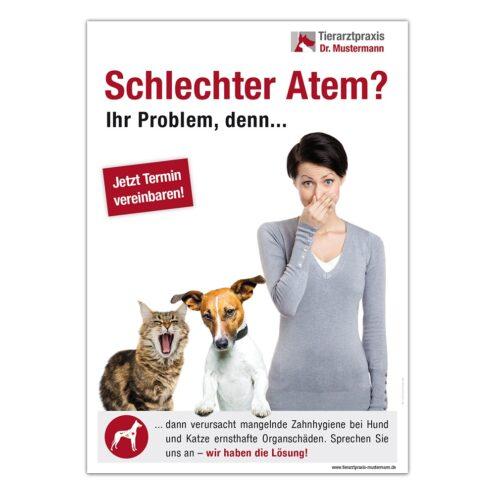 Poster Zähne Tiermedizin