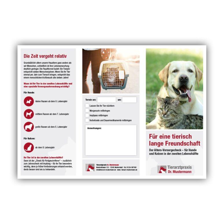 Information Geriatrie Tierarzt