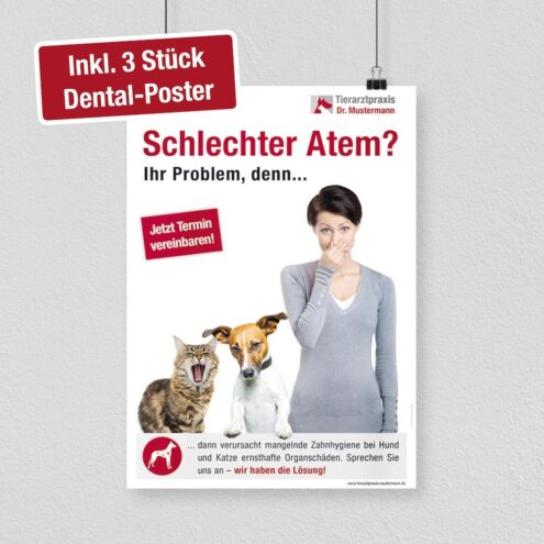 Poster Dental Tiermedizin