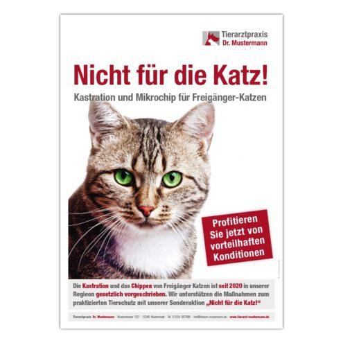 Chippen Katze Tierarztpraxis Poster