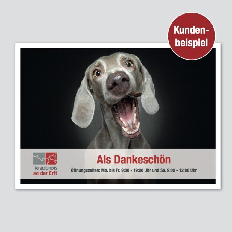 marketing tierarztpraxis