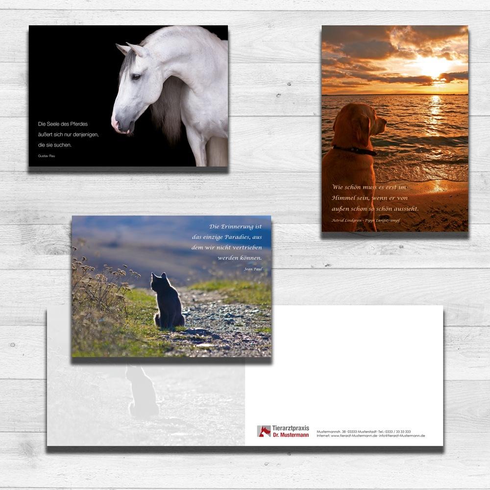 Trauerkarten Hunde Katzen Pferde Tierarztpraxis