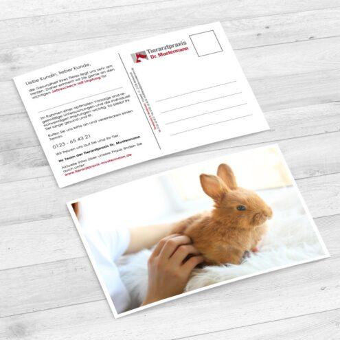 Foto einer Impferinnerung Postkarten für Kaninchen