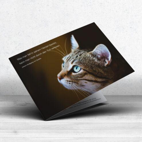 Mockup der RUHMservice Trauerkarte für Tierarztpraxen mit einem Katzen-Motiv