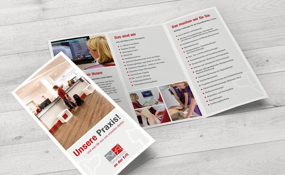 Flyer & Folder Tierarztpraxis