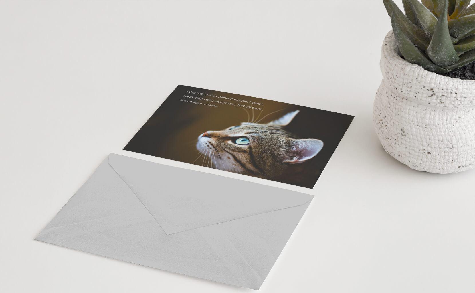 Trauerkarten Katze